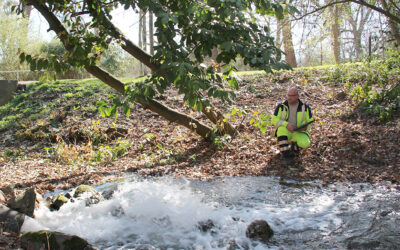 Kappung von Grundwasserspitzen in Korschenbroich