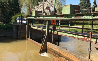 Wasserbauer*in