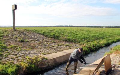 Hochwasser – Aktuelle Messwerte